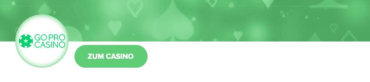 GoPro Casino Erfahrungen Bewertung